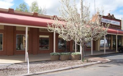 Image of the Henty Library exterior